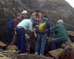 search for lichens at McLellan Park copyright Colin Freebury